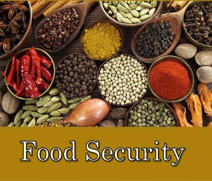 You are currently viewing The Politics of Food Security in Nigeria The poverty changer