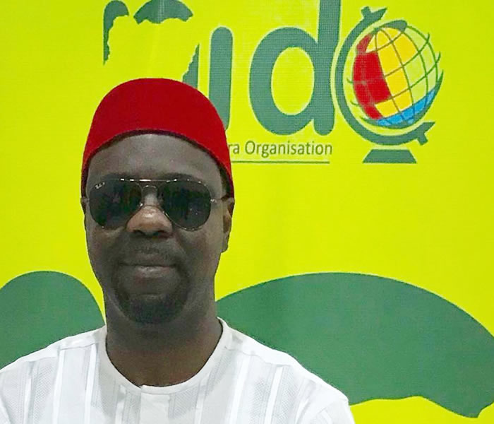 You are currently viewing Nigerian Diaspora  are in the Diaspora for Homeland Development Initiative.