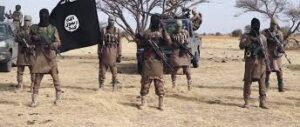 Read more about the article Boko Haram killed 30 on Borno farms recently – Village head