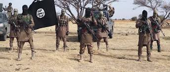 You are currently viewing Boko Haram killed 30 on Borno farms recently – Village head