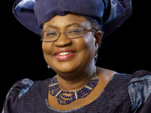 Read more about the article Sonny Iroche, coordinator,Abia Professionals Group charges the incoming Biden government to support Dr Ngozi Okonjo-Iweala as the next Director General of the World Trade Organization
