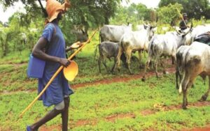 Read more about the article Fulani Jihadist Gives Okowa 72 Hours To Withdraw Support For Ban On Open Grazing