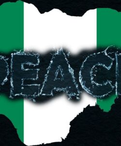 Read more about the article Nigeria's 2023 Presidential Transition Inter-Ethnic Peace Dialogue 2021: an effort to forestall the imminent drift towards another civil war and forceful disintegration of Nigeria.