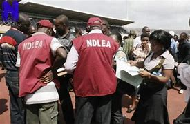 Read more about the article 231 Drug suspects Arrested in Oyo by NDLEA