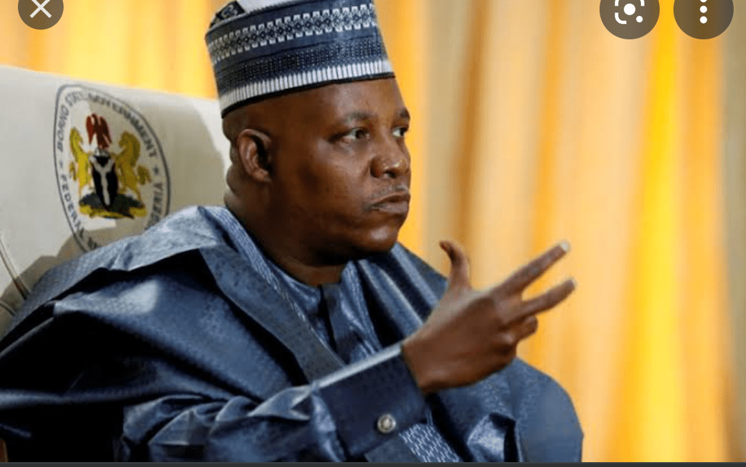 You are currently viewing 2023:  Ex-Borno gov, Shirts Shettima Calls for Power Shift to the South