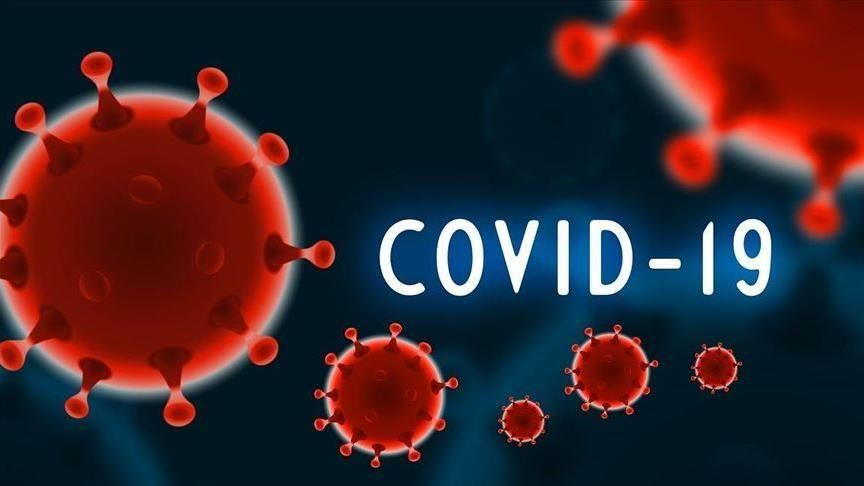 You are currently viewing Nigeria records 637 COVID-19 cases, seven deaths