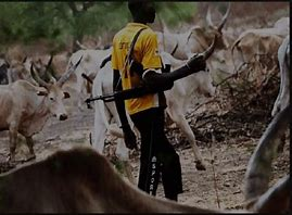 Read more about the article Middle Belt: SMBN vows to defend their people against terror herdsmen & terrorists